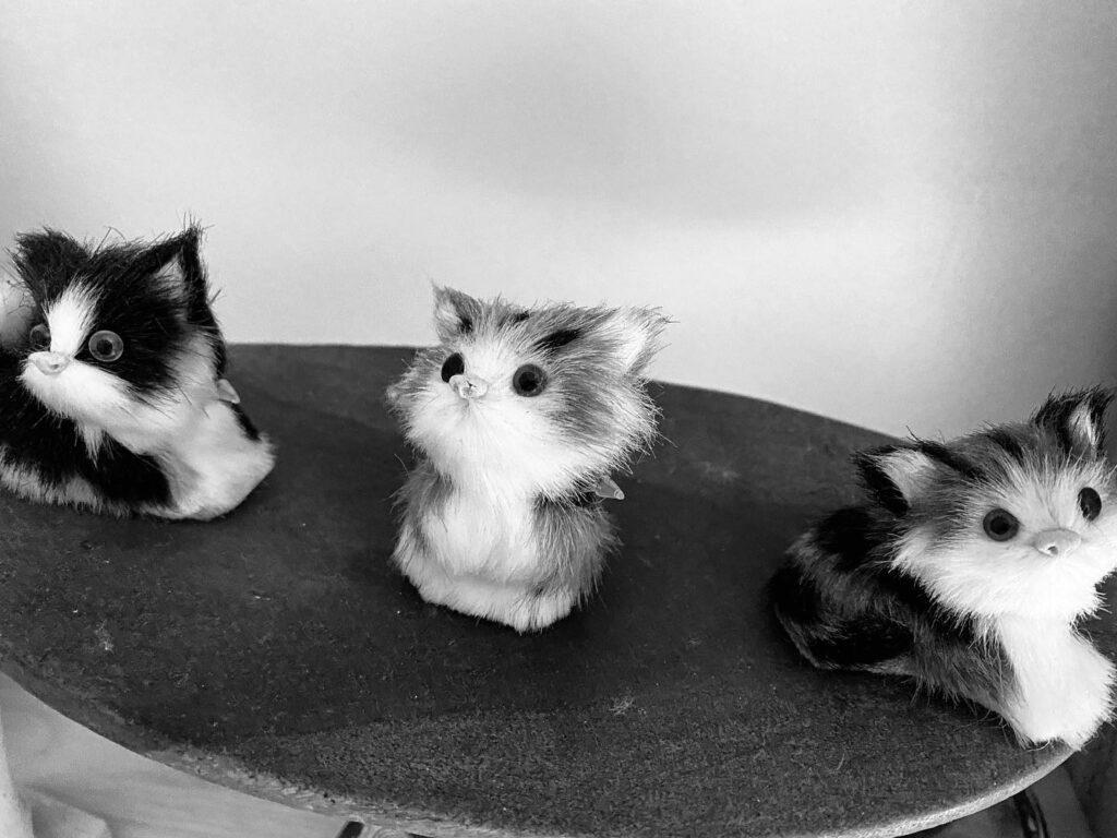 Drei kleine Stoffkätzchen auf einer Schale
